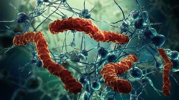 red de células nerviosas y virus