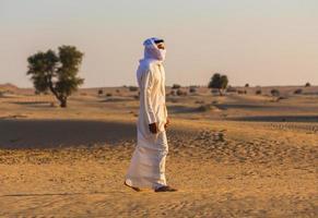 desierto arábigo