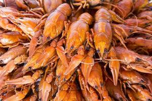 Many crawfishes photo