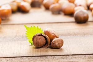 Hazelnuts on wooden background photo