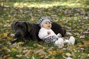 cachorro de bebé y bastón corso