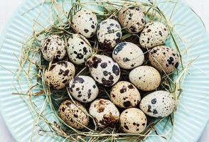 Easter - quail eggs with hay on pastel blue plate