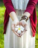 flor de plumeria foto
