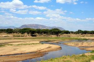 Ruaha river in dry season, African landscape