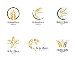 Agriculture Wheat and Grain Logo Set  vector