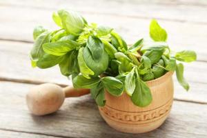Basil leaves in wooden mortar on grey wooden background