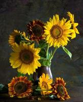 Beautiful sunflowers in a vase photo