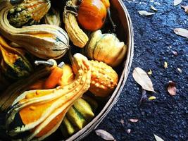 Colorful gourds in a basket