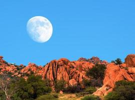 luna del desierto foto
