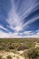desierto de wyoming foto