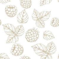 Raspberry hand drawn seamless pattern vector