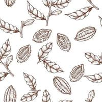 Cacao hand drawn seamless pattern vector