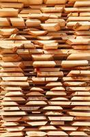 Fresh wooden studs photo