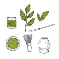 Matcha hand drawn set vector