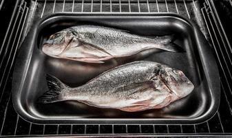 Dorado fish in the oven. photo