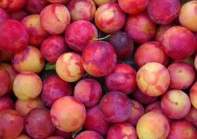 prunes rouges jaunes et violettes