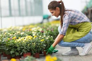 Young woman gardening in greenhouse.