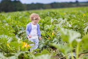 Funny girl in zucchini field at farm on autumn day