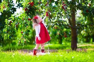 Cute little girl picking fresh cherry berry in the garden
