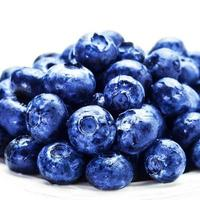 Blueberries on white plate isolated photo