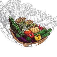 Basket of vegetables design vector