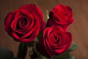 mazzo di rose su uno sfondo di legno