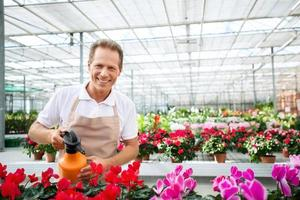 Professional florist workin gin the greenhouse photo