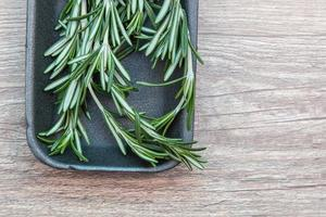 rosemary in a tray on the table