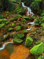 Cascades in rapid stream of mineral water. Ferric sediments