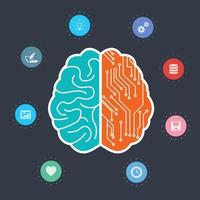 Creative Brain With Two Sides vector