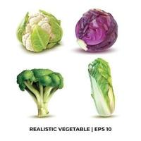 Realistic Vegetable Design Template.