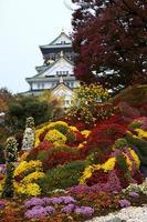 osaka castle flowers photo