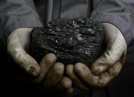 Coal in hands photo