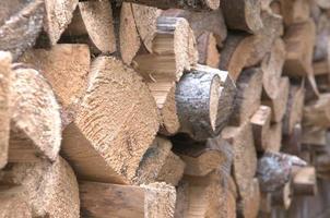montones de troncos