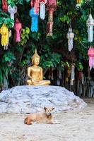 Buda de oro en el templo de Wat Phan Tao Chiang Mai, Tailandia