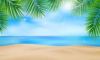 fundo de palmeiras vetor