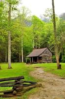 Cades Cove log house and greenery in spring.
