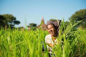 agricultor birmano foto