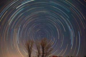 polaris et traînées d'étoiles au-dessus des arbres