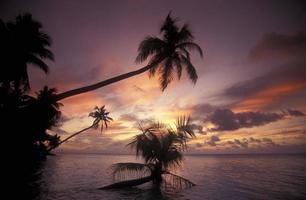 INDIAN OCEAN MALDIVES BEACH photo