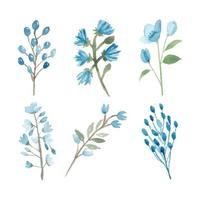 Watercolor hand painted blue floral element collection vector