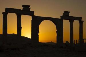 ancient columns - Palmyra photo