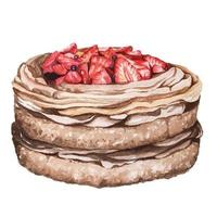 Strawberry chocolate cake painted with watercolor