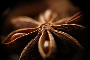 Star anise seeds. Blurred background