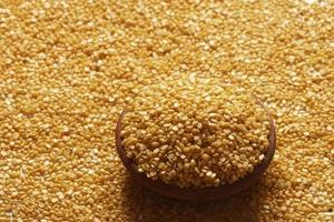 Masoor dal or pulse are used in Indian cooking