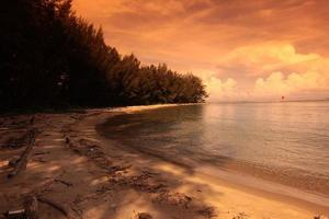 playa de la costa de brunei darussalam foto