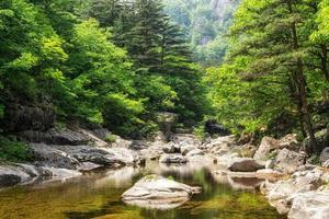 Creek and Odaesan Mountain