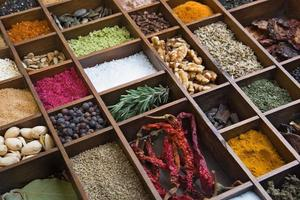Various spices photo