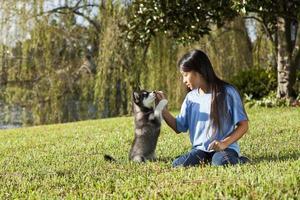 filhote de cachorro de treinamento da menina