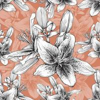 Seamless pattern botanical Lily flowers  vector